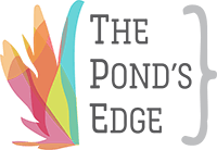 The Pond's Edge